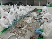 Crevettes : le Vietnam gagne des parts de marché en R. de Corée
