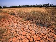 Des chercheurs américains discutent de la sécheresse dans le Delta du Mékong