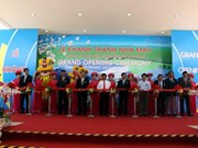 Inauguration d'une usine japonaise à Quang Ngai