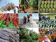 Les produits agricoles, sylvicoles et aquatiques rapportent 15 mds d'USD