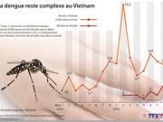La dengue reste complexe au Vietnam