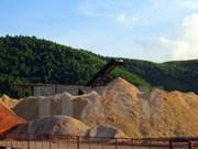 Exportation de 1,8 million de tonnes de copeaux de bois lors du premier semestre