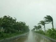 La tempête Dianmu frappe les provinces de Hai Phong et de Thai Binh