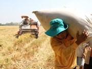 Le revenu percapita en zone rurale aura doublé dans 5 ans