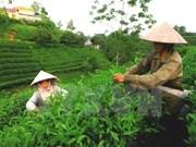 Les points forts de Thai Nguyen présentés aux entreprises américaines