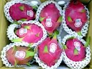 L'Australie donne son feu vert aux importations de fruits du dragon frais vietnamiens