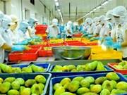 Les exportations de fruits et légumes pourraient atteindre 2,6 milliards de dollars cette année