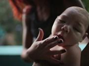Le Vietnam recense deux nouveaux cas de Zika