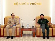L'ONU soutient le Vietnam dans la participation aux opérations de maintien de la paix