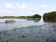 90 milliards de dôngs pour développer le tourisme durable dans le parc national de Tràm Chim