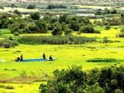 Gestion écologique réussie au parc national d'U Minh Thuong