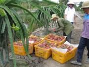Promotion du commerce des produits agricoles, sylvicoles et aquatiques Vietnam-Australie