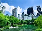 Réconcilier croissance économique et environnement