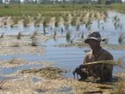 Approbation d'un projet d'approvisionnement en eau potable de 286 millions de dollars à Bên Tre