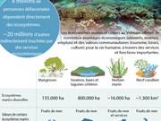 Les écosystèmes marins et côtiers au Vietnam