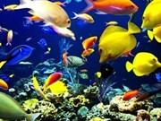 Le Vietnam et la Russie coopèrent dans l'étude sur la biodiversité des eaux au Centre