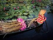 Belles images sur le Vietnam du magazine National Geographic 2016