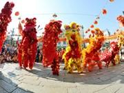 Cân Tho : 4ème Festival national de danses de la licorne et du dragon