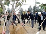 Lancement de la Fête de plantation d'arbres du Printemps Dinh Dâu 2017