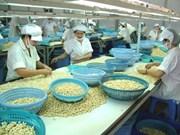 Les exportations de noix de cajou atteindront 3 milliards de dollars en 2017