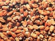 Le Vietnam suspendra ses importations de cinq produits agricoles d'Inde