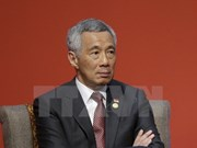 Promouvoir des relations de coopération satisfaisantes Vietnam-Singapour