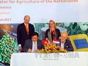 Les Pays-Bas soutiennent le Vietnam dans l'agriculture