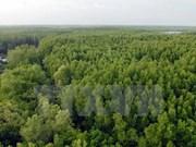 Programme national de réduction de la déforestation