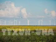 Bac Lieu travaille avec des investisseurs dans l'énergie éolienne