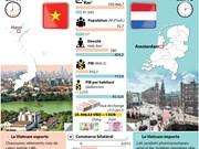Les relations Vietnam - Pays-Bas en développement positif