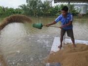 La filière pangasius doit s'orienter vers le développement durable
