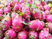 Les exportations nationales de fruits et légumes sont au beau fixe