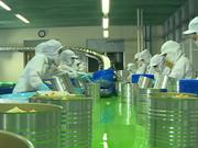 Alimentaire: un nouveau projet du groupe sud-coréen mis en chantier à Hô Chi Minh-Ville