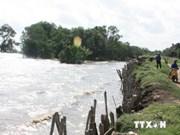 Delta du Mékong: 24 projets de lutte contre le changement climatique à lancer d'ici 2020