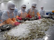 Les Etats-Unis augmentent les taxes antidumping sur les crevettes vietnamiennes