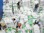 Les exportations de riz devraient atteindre 5,2 millions de tonnes en 2017