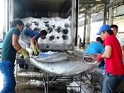 Hausse des exportations de produits aquatiques en huit mois