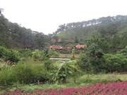 Lâm Dông : Dà Lat, la ville noyée dans la verdure