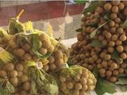 Cinq tonnes de longanes de Hung Yen expédiées aux Etats-Unis