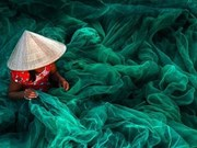Une photo prise au Vietnam distinguée au Siena International Photo Awards