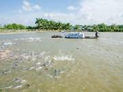 9 milliards de dollars d'exportations de produits aquatiques