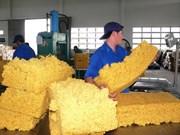 979.000 tonnes de caoutchouc exportées en 9 mois