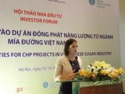 Développement des bioénergies à base de bagasse: une opportunité pour les investisseurs