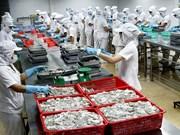 Les céphalopodes vietnamiens très populaires dans le monde