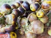 Le sucre de palme, une spécialité d'An Giang