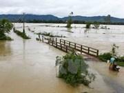 Octroi de près de 3.600 tonnes de riz à Ha Tinh et Son La
