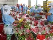 Les pitayas vietnamiens conquièrent le marché australien