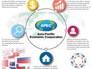 Femmes et économie de l'APEC: les tendances