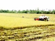 Le Vietnam applique la télédétection dans la production agricole