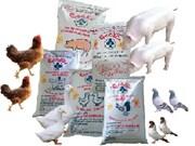 Coopération internationale pour améliorer la gestion de la qualité des aliments pour animaux